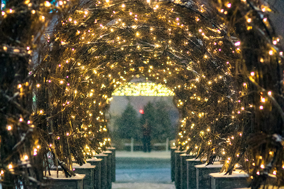 esplanade light installations in Detroit winter 2021